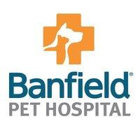 banfield rabies shot price