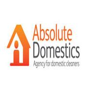 Absolute Domestics Adelaide Logo