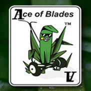 Ace of Blades Logo