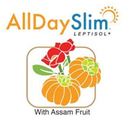 All Day Slim Logo