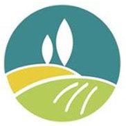 American Web Loan Logo