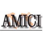 Amici Journal Publications Inc Logo
