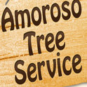 AMOROSO TREE SERVICE INC. Logo