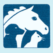 Animalia Logo