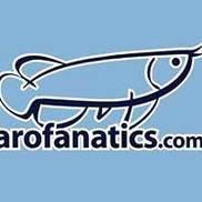 Arofanatics.com Logo