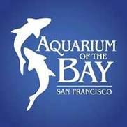 Aquariumofthebay.org Logo