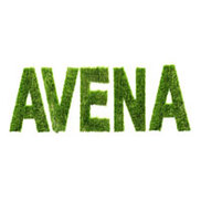 Avena Originals Logo