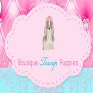 Boutique Teacup Puppies Logo