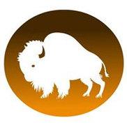 Buffalo Studios Logo