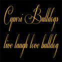 Cymri Bulldogs Logo