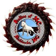 Bullies of NC Logo