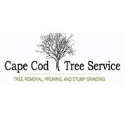 Tim Baker & Sons Tree Work Logo