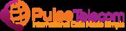 Pulse Telecom Logo
