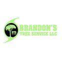 Brandon's Tree Service Logo