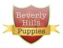 Beverly Hills Puppies Logo