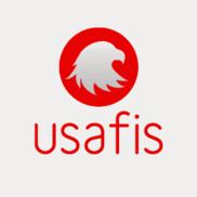 USAFIS Organization Logo