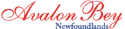 Avalon Bey Newfoundlands Logo