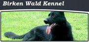 Birken Wald Kennel Logo