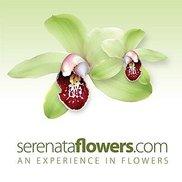 Serenata Flowers Logo