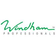 Windham Professionals Logo