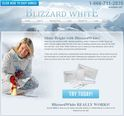 BlizzardWhite Logo