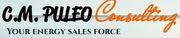 C.M. Puleo Consulting Logo