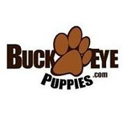 BuckEyePuppies.com Logo