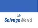 SalvageWorld.net Logo