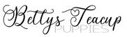 Betty's Teacup Yorkies Logo
