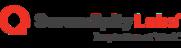 Serendipity Labs Logo