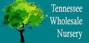 Wholesale Nursery Company / Tennessee Wholesale Nursery Logo