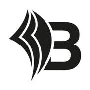Bizapedia.com Logo
