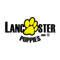 LancasterPuppies.com Logo