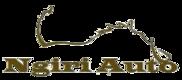 Ngiri Auto Logo