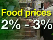 2011 Inflation Forecast